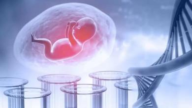 Fetal DNA Testi Nedir? Neden Yapılır?